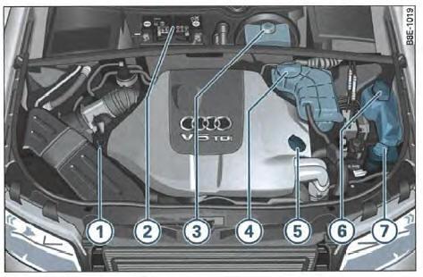 audi a4 avant notice d 39 utilisation vue d 39 ensemble du compartiment moteur moteur diesel 6. Black Bedroom Furniture Sets. Home Design Ideas